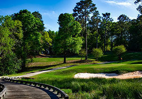 The Peninsula AL Homes for Sale